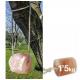 ZALDI PIENSO COMPLEMENTARIO PIEDRA SAL HIMALAYA 1.5kg