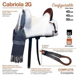 SILLA ZALDI C. CABRIOLA 2G (COMPLETA)