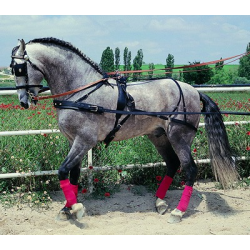 Enganche Hungara Doble Pecherin Pony