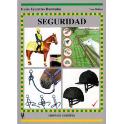 Libro: Guia Seguridad