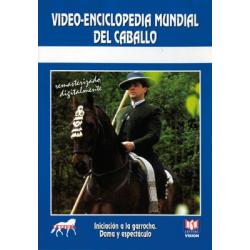 Dvd: Iniciacion A La Garrocha