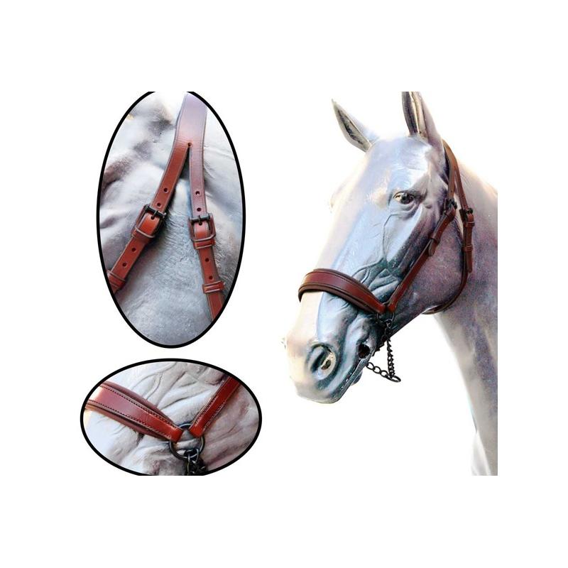 Cabezada presentacion caballo espa ol gomez equivan for Cabezadas para caballos