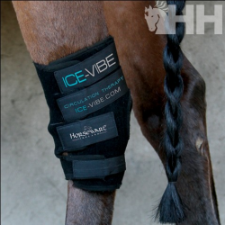 PROTECTOR CORVEJON ICE-VIBE HORSEWARE (SET COMPLETO)